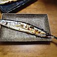 秋刀魚3号