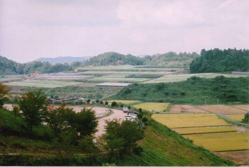 笠蕎麦の蕎麦畑