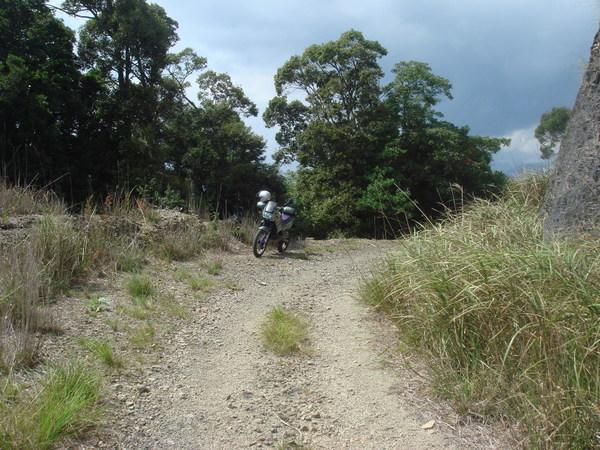 須賀利の先まで林道を行く