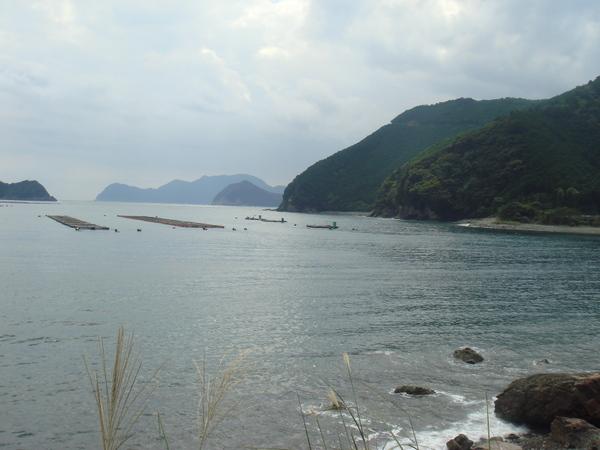 須賀利から岬の先端まで